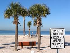Howard Park (Mark D L) Tags: ocean sea seascape beach gulfofmexico sign paradise gulf florida wheelchair palm palmtree seashore tarponsprings seacoast gulfcoast suncoast newspeak pinellascounty fredhowardpark