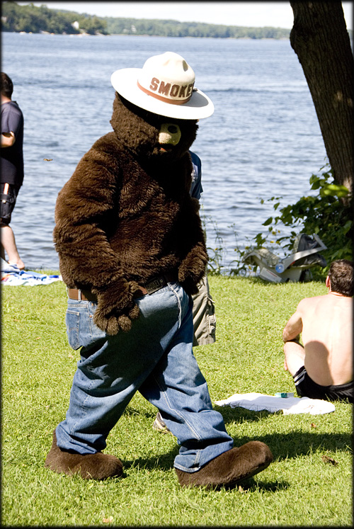 gay Smokey bear is