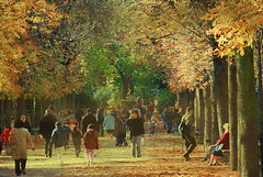 We sometimes encounter people, even perfect strangers, who begin to interest us at first sight, somehow suddenly, all at once, before a word has been spoken. (itala2007) Tags: trees people paris fall nikon explore vacations explored abigfave nikond80 seeninexplore itala2007 worldsartgallery