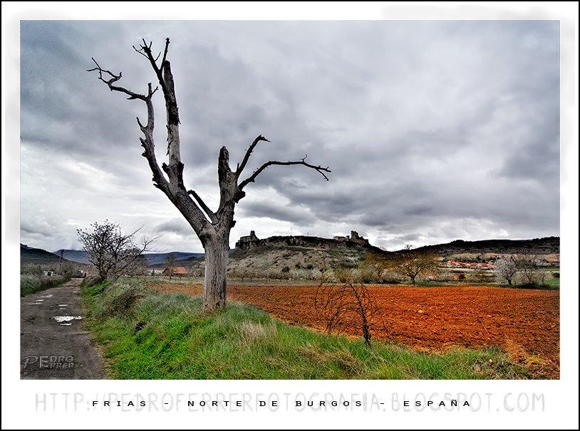 Frias - Burgos - Spain