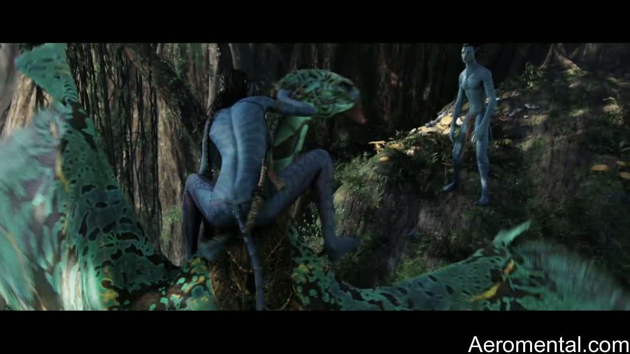 Avatar montando Navi