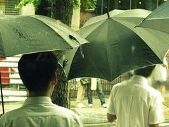 (Jessica Gosling ()) Tags: people rain weather umbrella different south bad korea seoul came lots picnik    hongdae