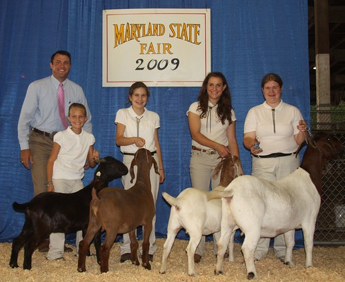 Champion 4-H Meat Goat Showman (L-R): Makenzie Charles, junior; Ashley Braun, intermediate; Claire Bennett, senior; and Margaret Buckmeier, championship challenge