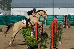 The last of the Hunter-Jumper Equestrian Event shots. (jc-pics) Tags: horses nikon d200 nikkor 70300mm equestrian vr afs hunterjumper