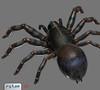 spider_3D_maya__RGB.vn