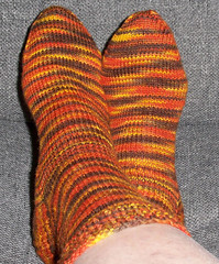 Artisan Acre Lambkins - Corn Maiden Socks