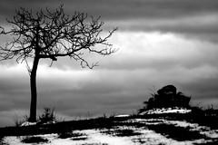 Escamilla-Tara. Tara-Escamilla. (darkside_1) Tags: bw españa blancoynegro blackwhite nieve guadalajara bn frío dzoom escamilla abigfave anawesomeshot sergiozurinaga bydarkside darkside1