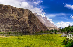 Gupis, Ghizer - HDR (Haroon Mustafa) Tags: blue trees sky plants love beauty grass yellow rock pine clouds high rocks heaven earth sony hill fresh hills mustafa dri hdr heavenonearth gilgit haroon ghizer freshgrass northernareasofpakistan lovepakistan w90 gupis sonyw90 khalti haroonmustafa