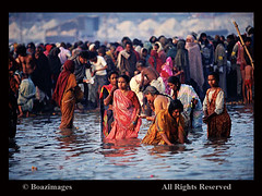 INDIA (BoazImages) Tags: india men water festival river women bath asia indian religion documentary holy bathing hindu hinduism sari ganga ganges mela purification subcontinent kumbh kumbha colorphotoaward boazimages
