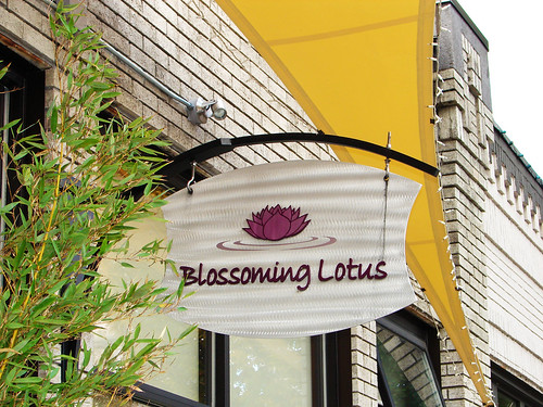 Lunch @ Blossoming Lotus