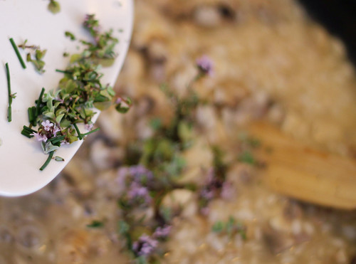 Adding Garden Herbs