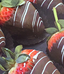 Happy Valentine's Day Flickr Friends XO (Renee Rendler-Kaplan) Tags: february142017 valentinesday chocolatecoveredstrawberries candy fruit allgood iphone iphoneography reneerendlerkaplan fanniemay chocolate stems leaves forsale consumerist chicagoist chicagoreader wbez