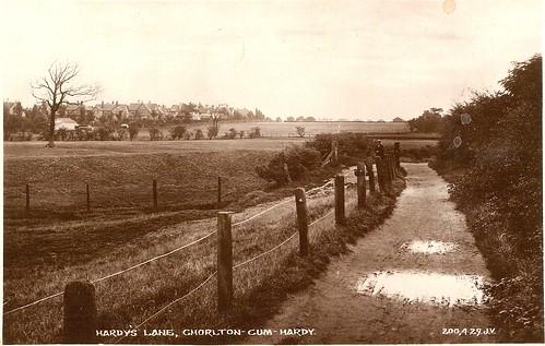 hardy lane postcard circa 1912