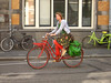 bici colorate