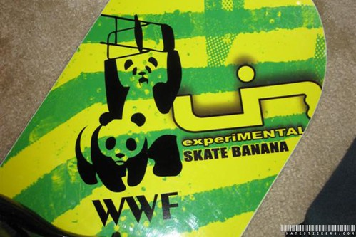 WWF Panda Sticker on snowboard
