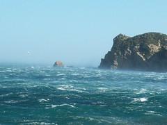 Javea Xabia Marina Alta Alicante Cala blanca. (Sergio de Anta) Tags: mar spain mediterraneo alicante blanca olas gaviota cala javea xabia marinaalta calablanca