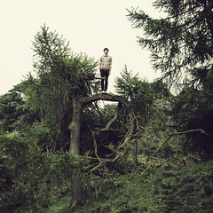 'P' is for Philip (STCM) Tags: shadow tree nature grass leaves shirt climb check farm branches hill pines