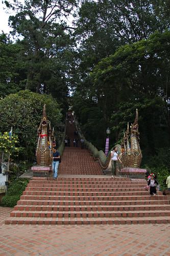 290 Naga steps