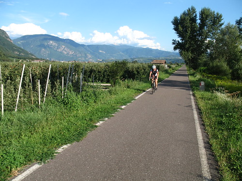Der Radweg folgt dem Fluss Etsch und führt größtenteils durch das Obstanbaugebiets