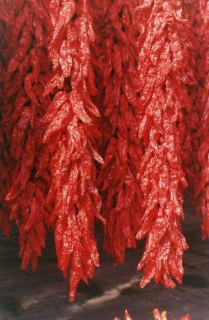 Peperone rosso di Senise