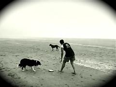 A Dog's Life (M-E-G-S) Tags: ocean people beach dogs nature oregon blackwhite scenery play beaches westcoast oswald oswaldstatepark smallmoments anawesomeshot diamondclassphotographer blackwhiteaward