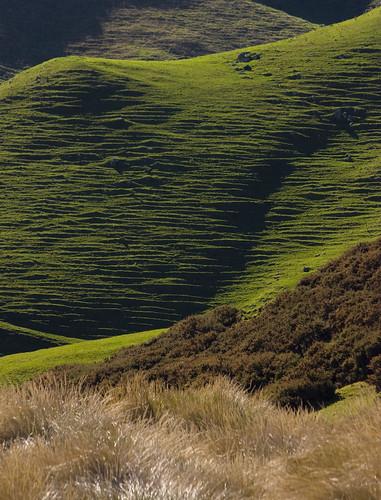 Farm hill