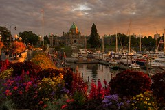 Dusk on the Inner Harbour (FP explored) (Brandon Godfrey) Tags: world pictures old city longexposure pink flowers sunset urban canada reflection building water colors clouds buildings reflections boats outdoors photography photo interestingness amazing fantastic twilight colorful day glow cityscape bc shot cloudy photos shots pics dusk earth britishcolumbia sony capital scenic picture parliament images victoria canadian vancouverisland capitol views stunning pacificnorthwest northamerica alpha dslr legislature hdr highdynamicrange 1000 comments touristattraction jamesbay innerharbour outstanding a300 photomatix harbourferry tonemapped tonemapping explored greatervictoria frontpageexplore dslra300 sonya300