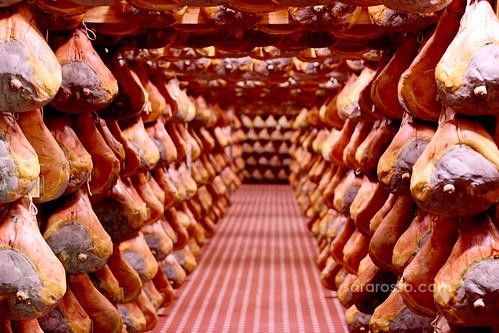 Endless hall of Prosciutto di Parma, Italy
