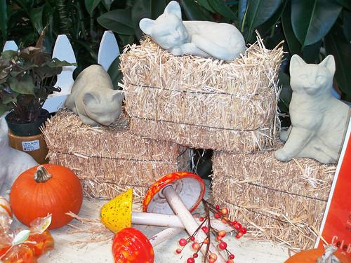 cement cats, statuary, pumpkins, hay bales,  orange and yellow ceramic mushrooms