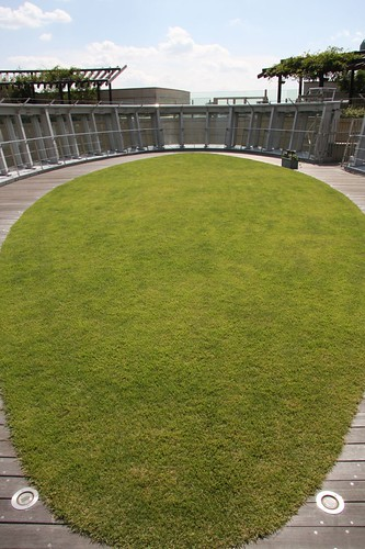The lawn of the roof