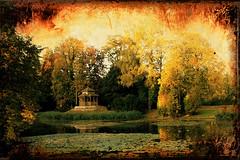 Sweet and smiling are thy ways     beauteous   golden Autumn days. (eyeflyer) Tags: park trees light fall sunshine reflections golden switzerland pond soft walk schnenwerd soulscapes eyeflyer autumnsymphony ballyparkgarden goldenpondlight