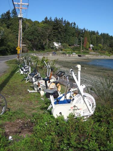 Vashon Island Bike Ride October 2009 013