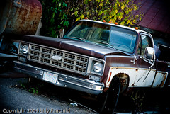 Unlike A Rock (28Photos) Tags: county old ohio chevrolet broken rock trash yard truck vintage for junk clinton like pickup down cash chevy 80s 70s oh scottsdale 1980 clarksville trashed clunker dually nikond60 noticings 28photos 28photoscom photographybybillyfairchild