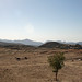 Eritrean countryside: On the road from Asmara to Keren