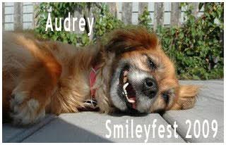 59-Audrey---3