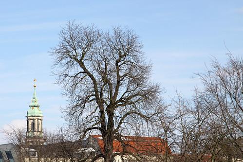 Sophienkirche1
