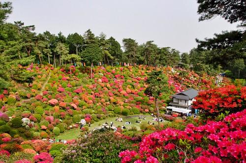 Shiofune-Kannonji Temple