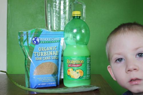 Aloe Vera Lemonade 1