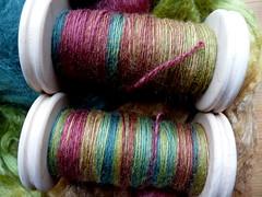 spinning Dicentra's BFL/Silk