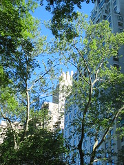 NYC 2011 066 (catchesthelight) Tags: nyc hotel centralpark manhattan historic angelinajolie celebrities artdeco renovation deco judelaw 59thst jumeirahessexhouse nationaltrusthistorichotelsofamerica essexhouseneonsign