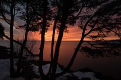 ...silhouette sunrise... (jamesmerecki) Tags: silhouette sunrise sunrising sunup dawn earlymorning me maine perkinscove cove marginalway atlantic ocean trees le longexposure landscape winter solitude peacefulness sea water sky newengland
