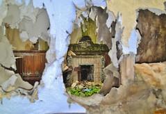 Asylum 'GR' (Michelle O'Connell Photography) Tags: asylum mentalasylum sanitorium mentalinstitute abandoned derelict vandalised