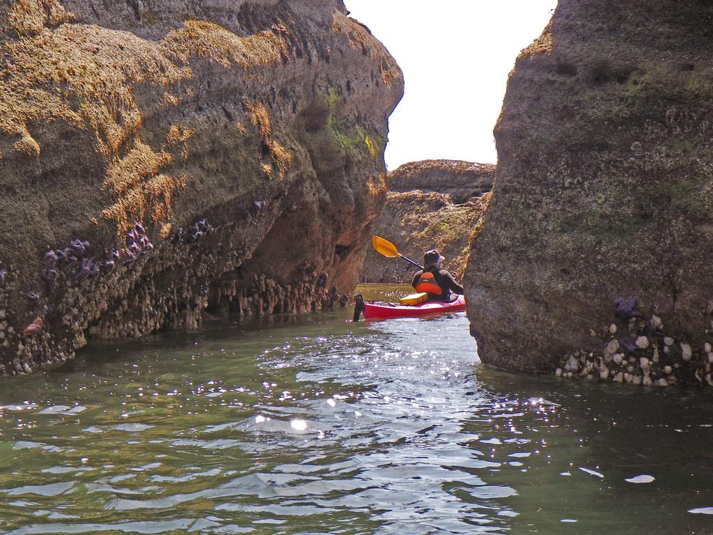 2009-05-24 Newcastle Island 077