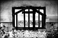 zoriah_photojournalist_war_photographer_AIDS_in_asia_20041208_9843 (Zoriah) Tags: photography photo cambodia photographer aids hiv photojournalism documentary vietnam phnompenh siemreap sida hivaids reportage photojournalist zoriah asia acquiredimmunedeficiencysyndromeimage