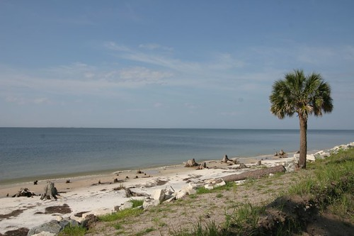 The Forgotten Coast, near Carrabelle Beach.