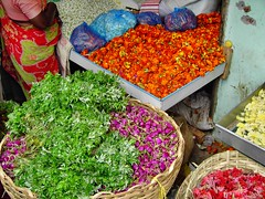 Color in the Market