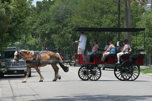 Horse carriage, Charleston.