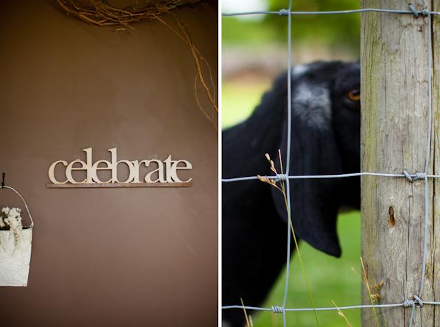 CelebrateGoats