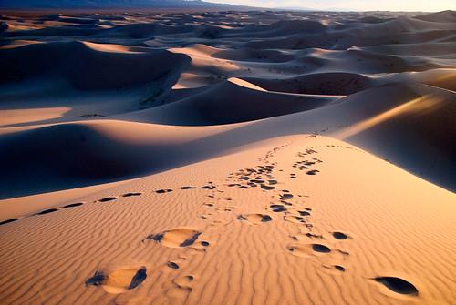 Gobi Desert 43