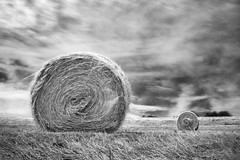 hay bales (nicola tramarin) Tags: longexposure summer bw italia estate hay bale haybales lungaesposizione blackwhitephotos polesine nicolatramarin
